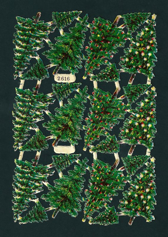 Tannenbäume L&B 2616.jpg