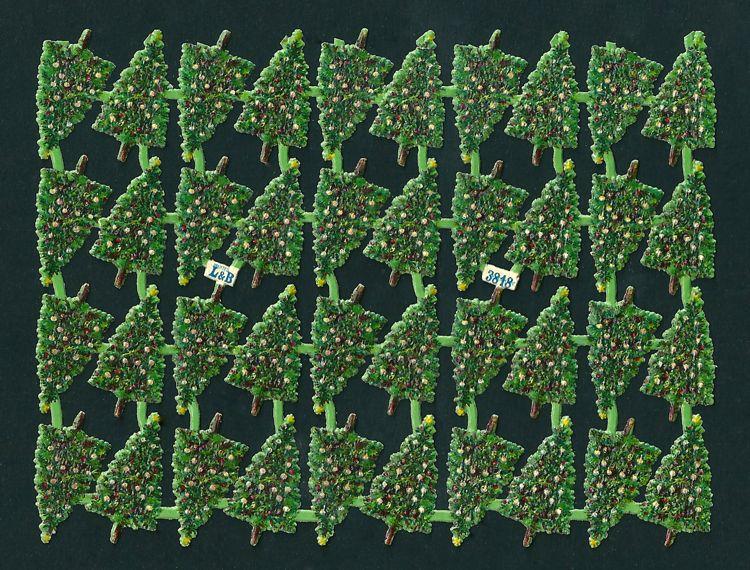 Tannenbäume L&B 3818.jpg